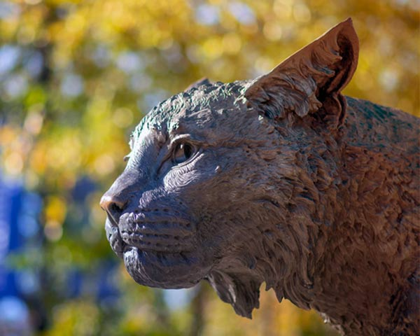 Wildcat sculpture