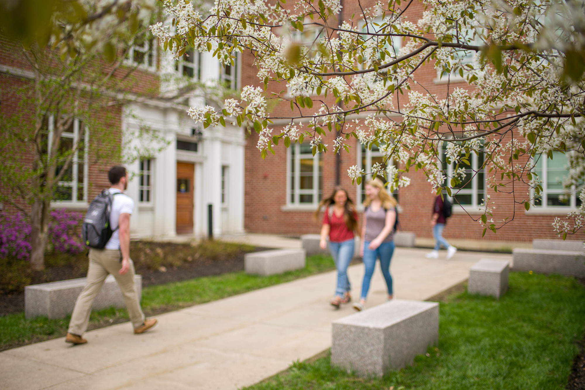 Students walking on campus on a spring day