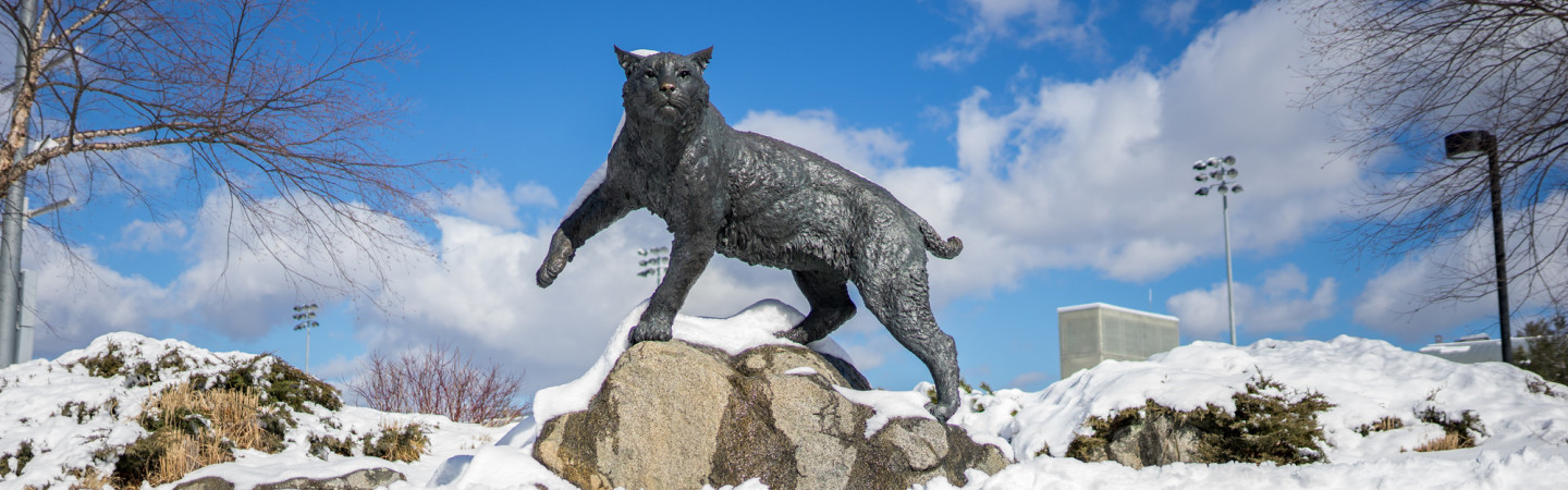 Wildcat statue and snow